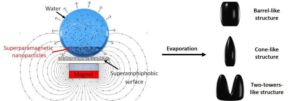 Shaping the Assembly of Superparamagnetic Nanoparticles